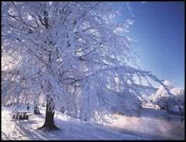 Scotland-Revealed-in-Winter2-www.download.ir