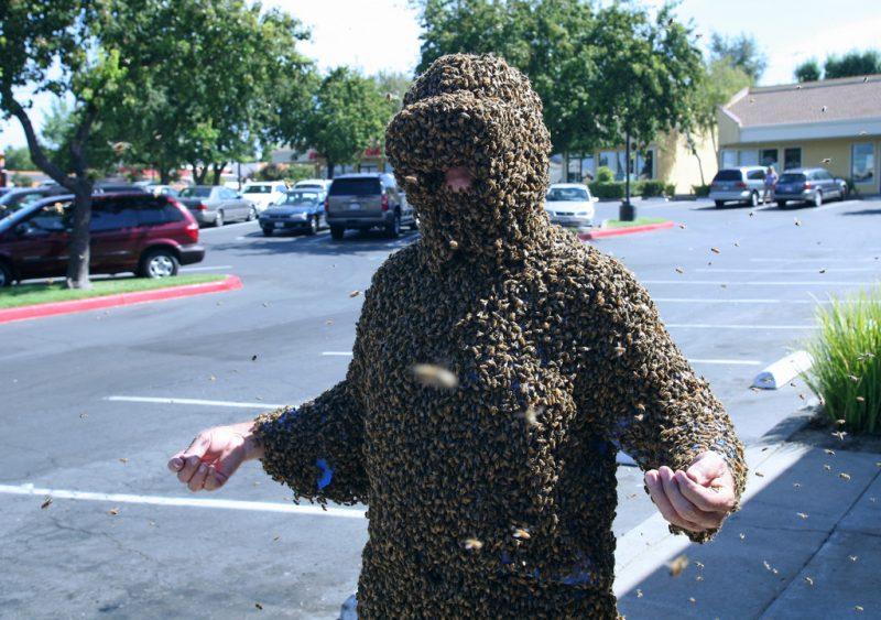 Nature Incredible Invasions