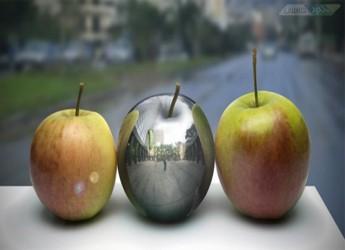 Amazing-Learning-Adobe.www.Download.ir