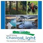 DAVID.NOTON.CHASING.THE.LIGHT.5x5.www.Download.ir