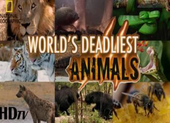 Worlds-Deadliest-Animals.www.Download.ir