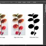 دانلود فیلم آموزشی Illustrator CS6 One on One Fundamentals