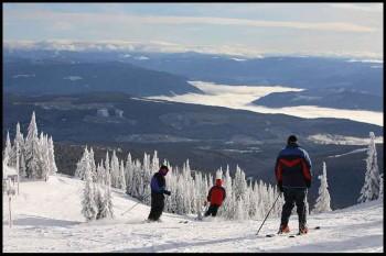 Skiing Skills Beginners and Beyond