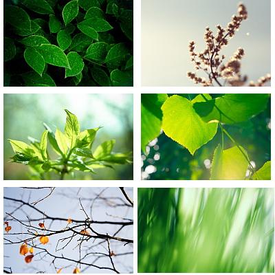 natural.HD.wallapper.02.www.Download.ir