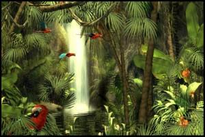 rainforest.www.download.ir.