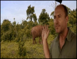BBC.Natural.World.2013.Sri.Lanka.Elephant.Island.www.download.ir