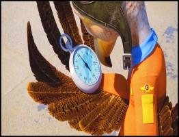 Wings2.www.download.ir