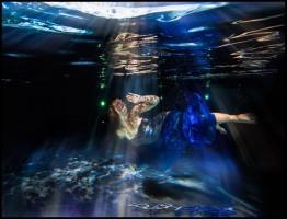The Underwater Pixelguide1.www.download.ir