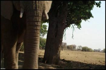 دانلود فیلم مستند Africa 2013 Countdown To The Rains