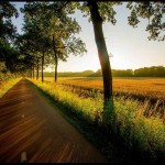 دانلود 100 Wallpaper عکس فوق العاده از مناظر طبیعی با کیفیت اچ دی