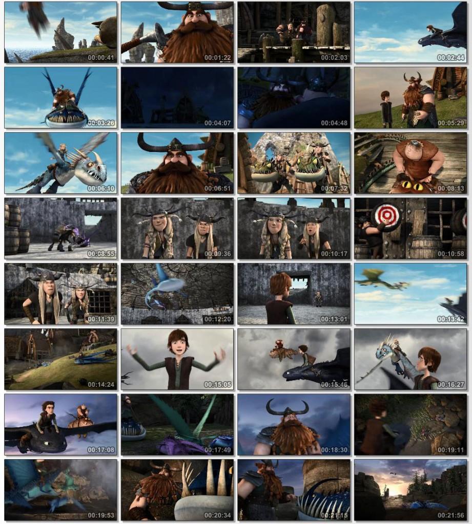2013 Dragons Defenders of Berk