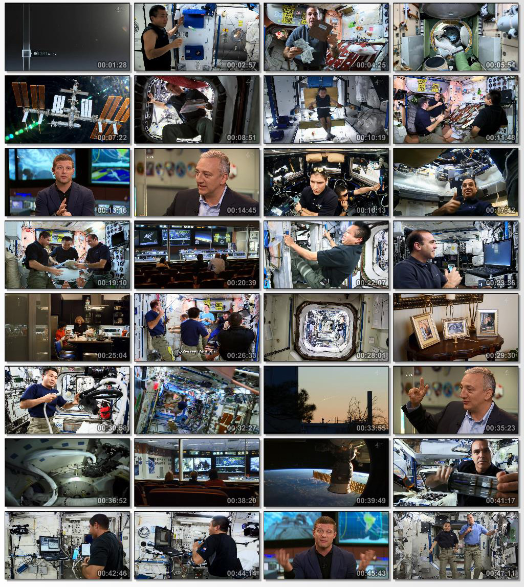 Astronauts Living In Space
