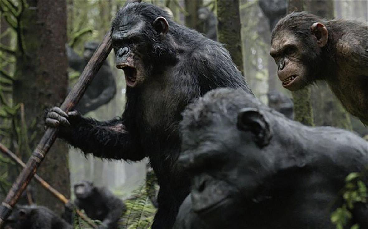 دانلود فیلم Dawn Of The Planet Of The Apes طلوع سیاره میمون ها