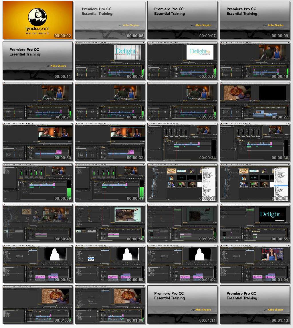 Lynda Premiere Pro CC Essential Training