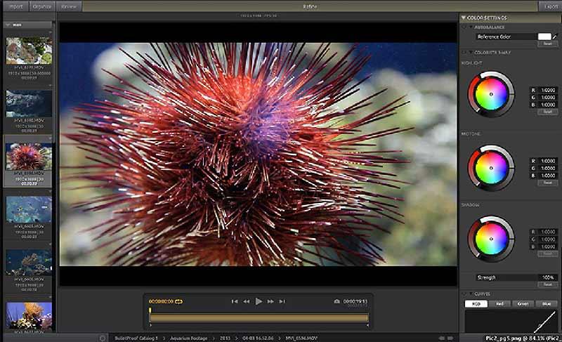 دانلود آخرین نسخه نرم افزار Red Giant Shooter Suite کار با تصویر