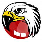 دانلود آخرین نسخه نرم افزار BlackHawk Web Browser