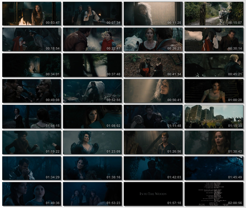 Into.the.Woods.2014.DVDSCR.480.www.download.ir.mkv_thumbs_[2015.01.07_12.29.42]