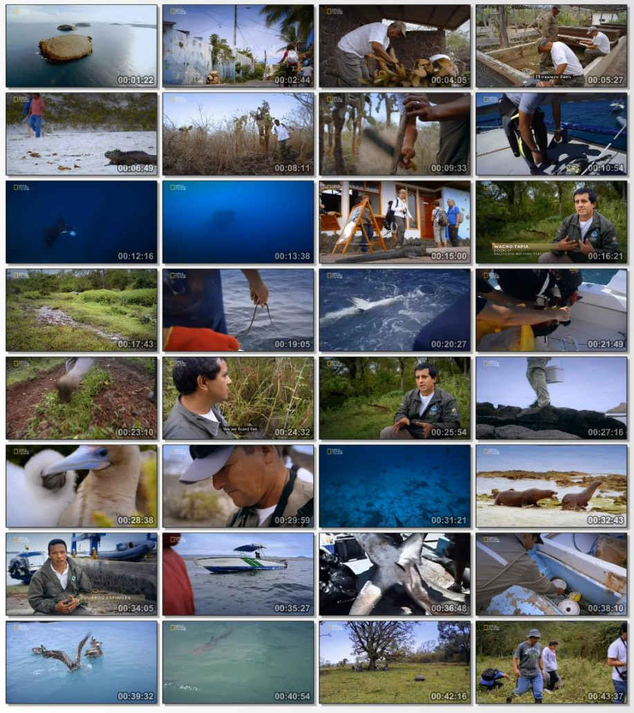 Access.360.World.Heritage.Galapagos.2014.720p.HDTV.www.download.ir.mp4_thumbs_[2015.02.07_13.21.34]