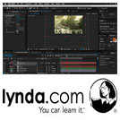 Lynda-Bringing.Your.Photos.to.Life.in.Three.Dimensions.5x5.www.Download.ir