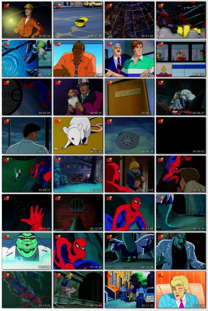 دانلود انیمیشن سریالی Spider Man The Animated Series