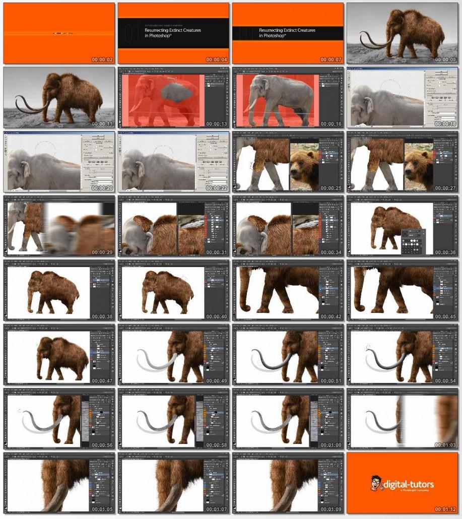 DT-Resurrecting.Extinct.Creatures.in.Photoshop.www.Download.ir