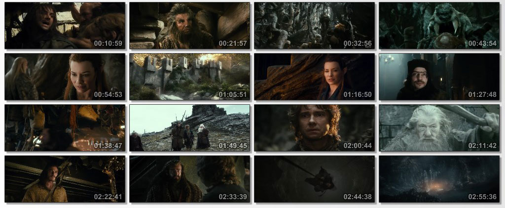 The Hobbit The Desolation of Smaug 2013 - Screen