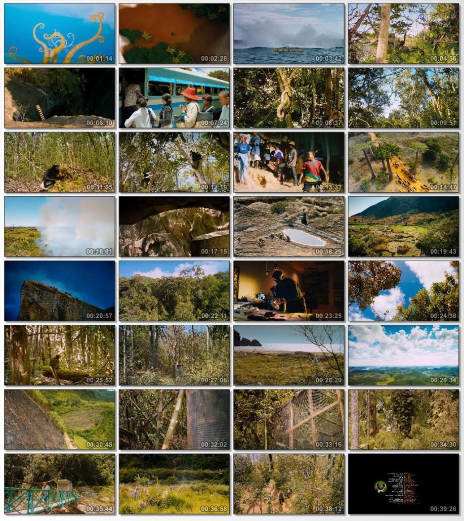 دانلود فیلم مستند Island of Lemurs Madagascar