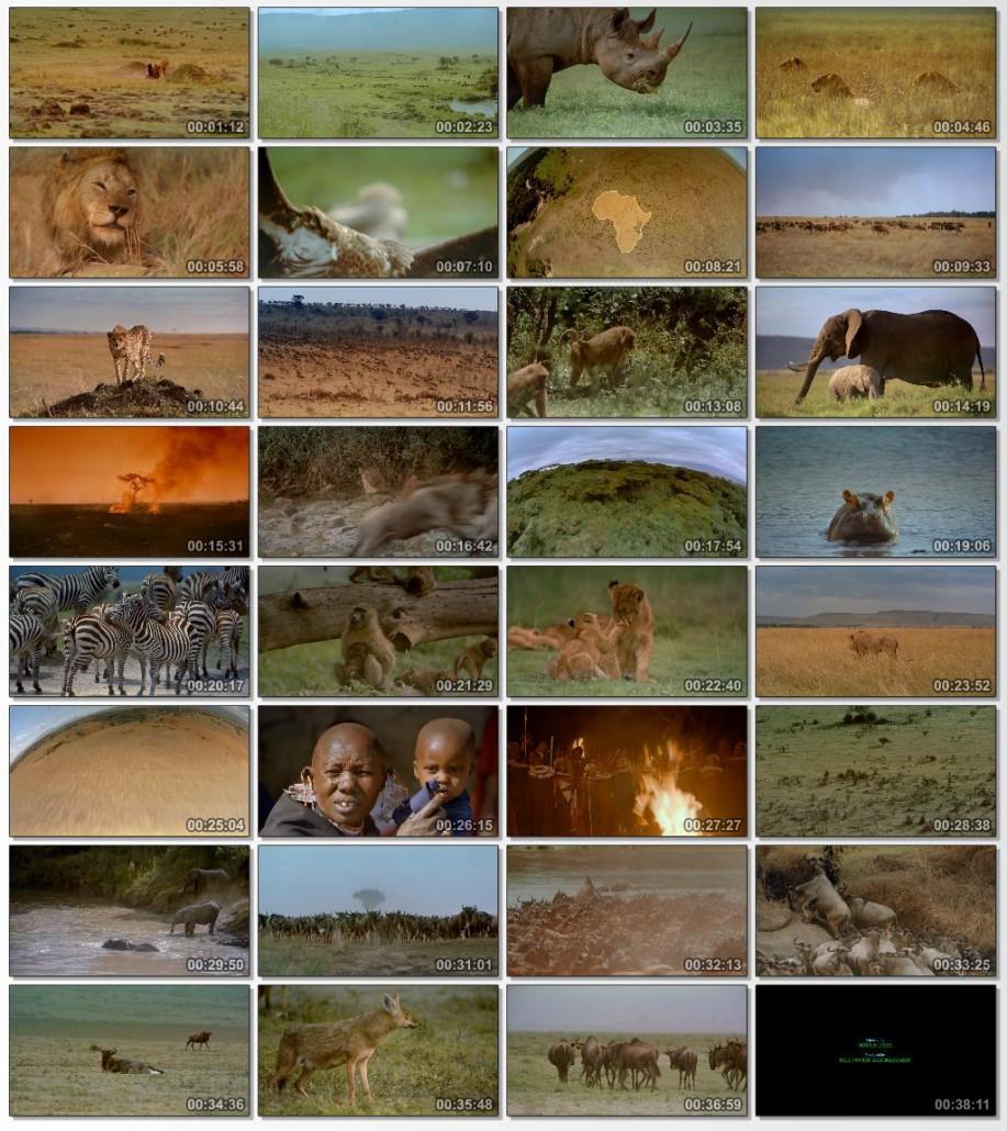 دانلود فیلم مستند Africa The Serengeti 1994