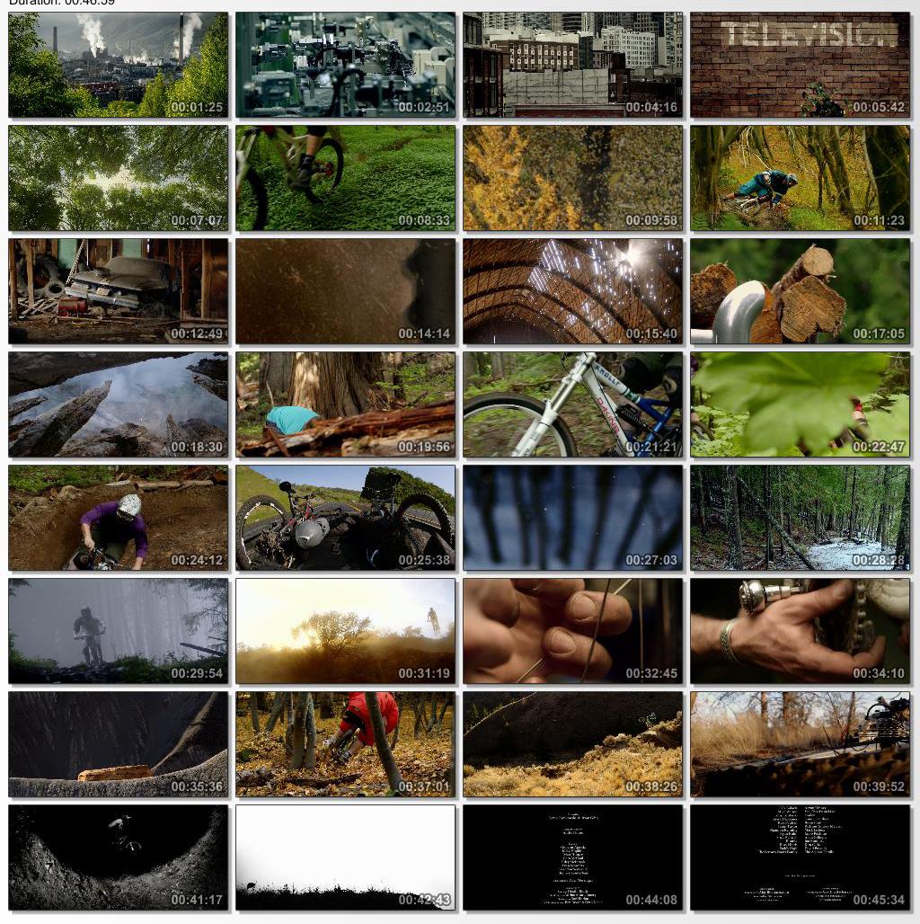 دانلود فیلم مستند Life Cycles 2010