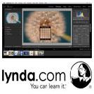 Lynda-Lightroom.6.and.CC.Essential.Training.2015.5x5.www.Download.ir