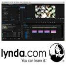 Lynda-Premiere.Pro.Guru-Compositing.and.Masks.5x5.www.Download.ir