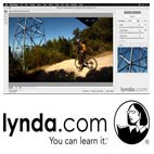 Lynda-Using.and.Creating.Lens.Profiles.in.Adobe.CC.Applications.5x5.www.Download.ir