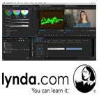 Lynda-Introduction.to.Video.Color.Correction.5x5.www.Download.ir