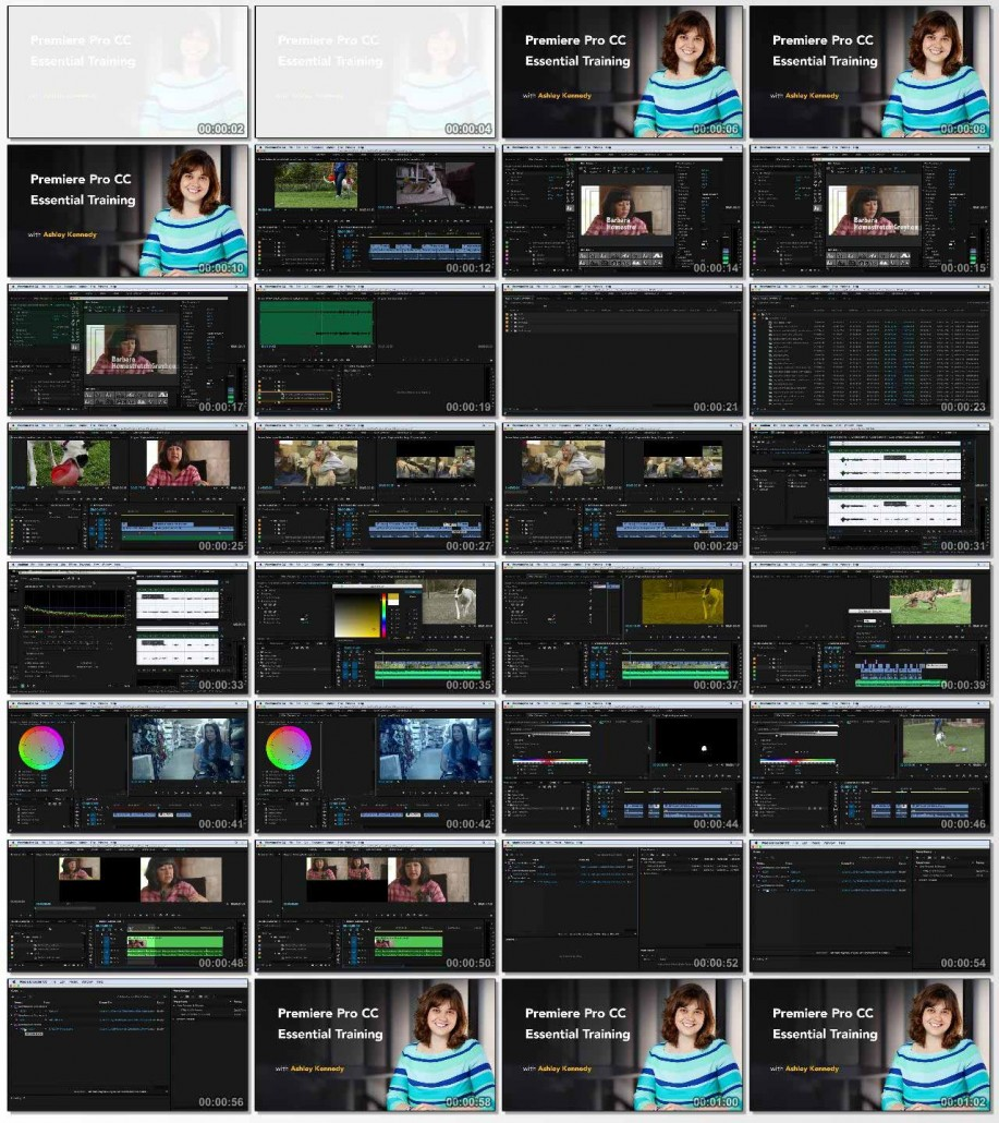Premiere Pro CC Essential Training 2015