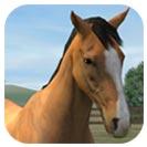 دانلود بازی جدید My Horse برای اندروید
