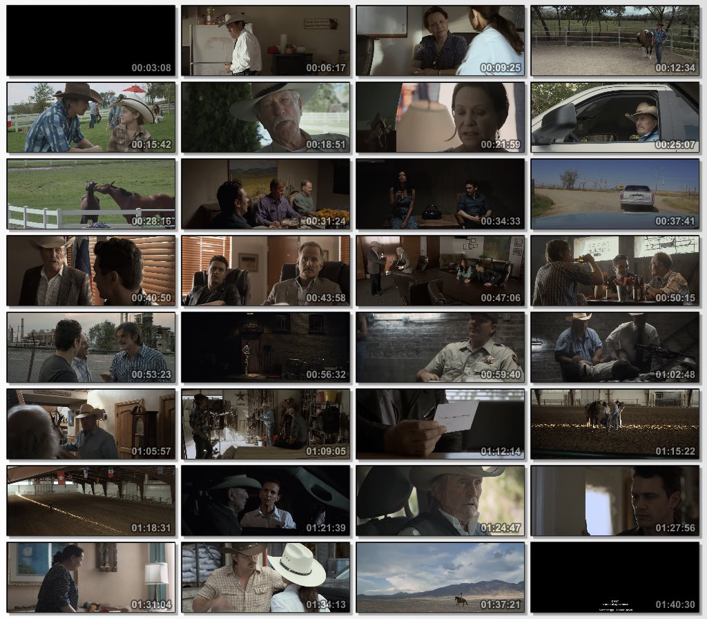 دانلود فیلم Wild Horses 2015