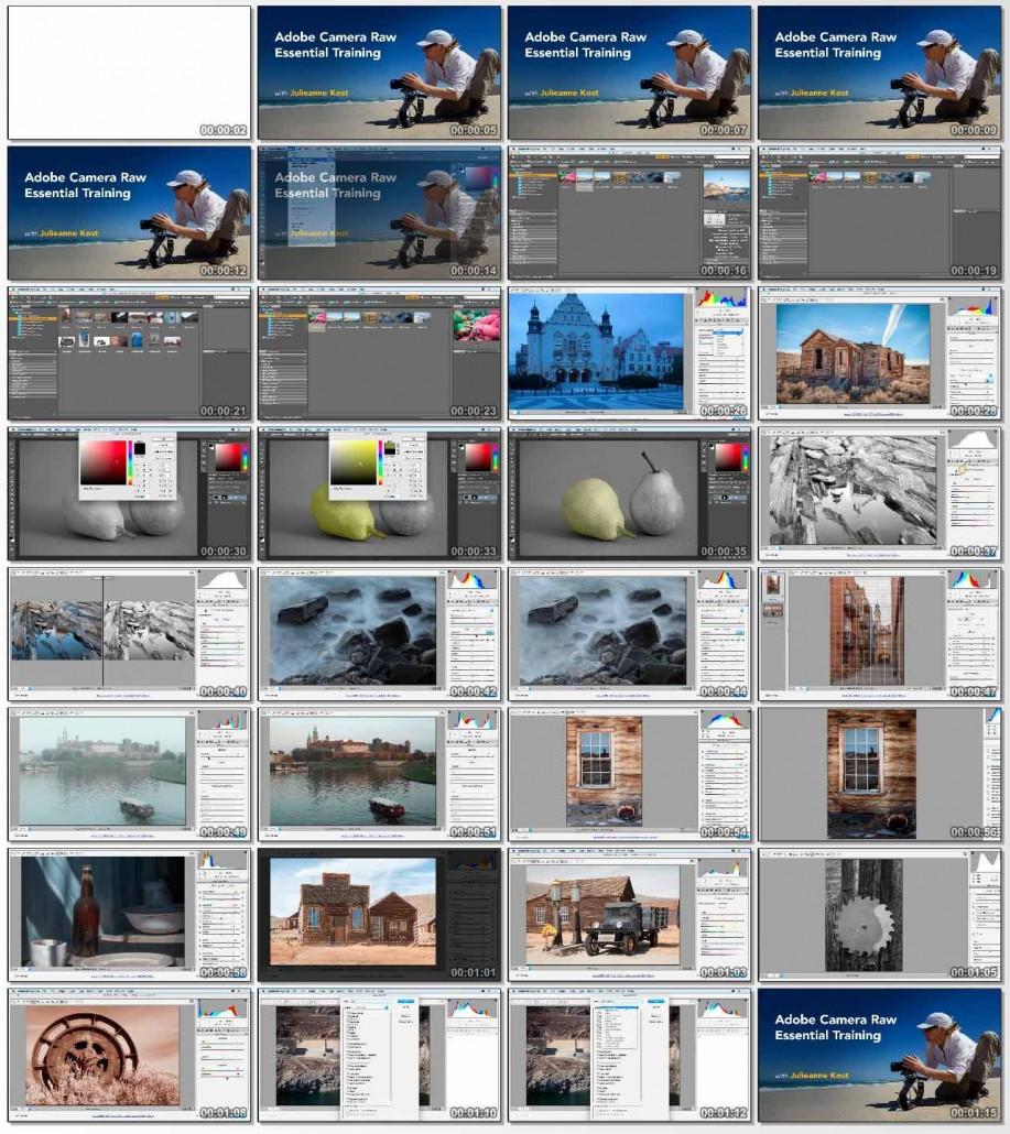 Adobe Camera Raw Essential Training