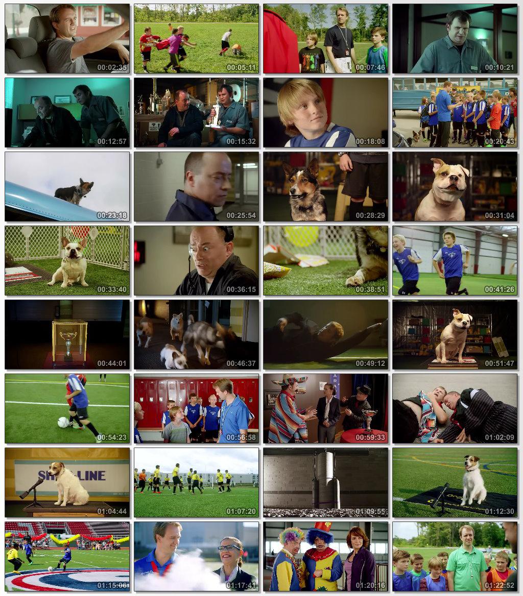 دانلود فیلم سینمایی Pups United 2015