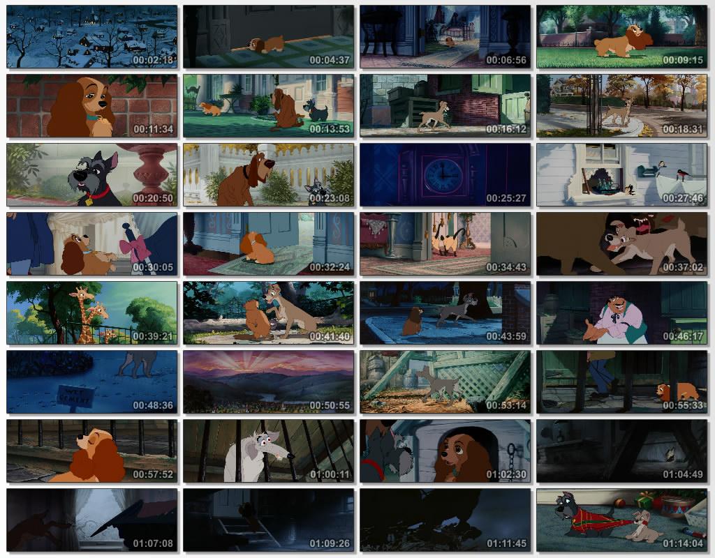 دانلود انیمیشن کارتونی Lady and the Tramp 1995