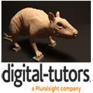 DT-Sculpting.Workflows.in.Maya.5x5.www.Download.ir