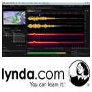 Lynda-Sound.Design.for.Motion.Graphics.5x5.www.Download.ir