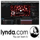 Lynda-After.Effects.Guru.Effects.and.Preset.Management.5x5.www.Download.ir