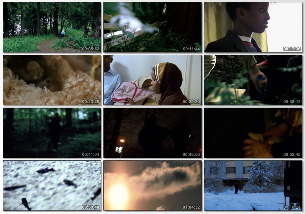 دانلود فیلم مستند Along the Road Little Child 2005