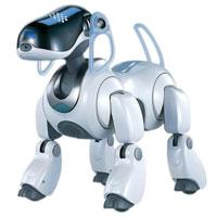 مبانی علم رباتیک