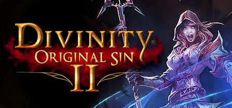 دانلود بازی کامپیوتر Divinity Original Sin 2