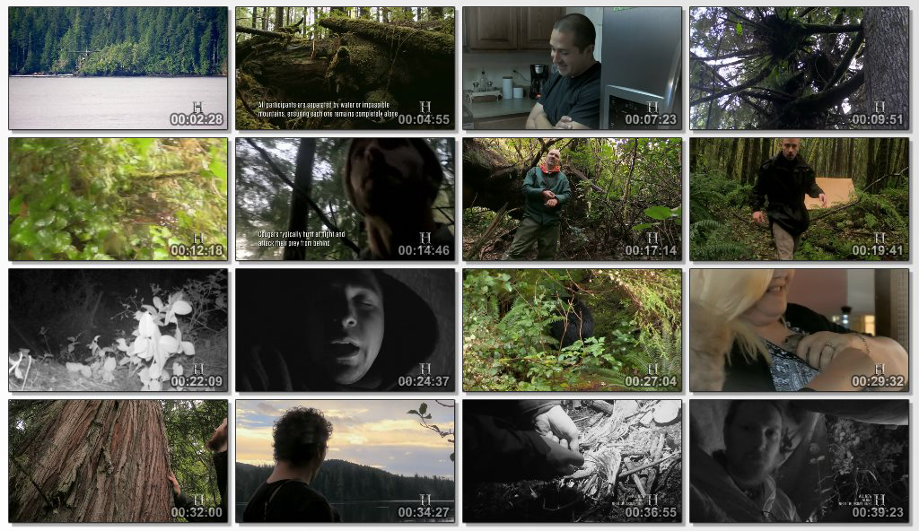 دانلود مستند سریالی Alone 2015