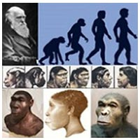 کتاب فرضیه شجره و خلقت نخستین انسان ها