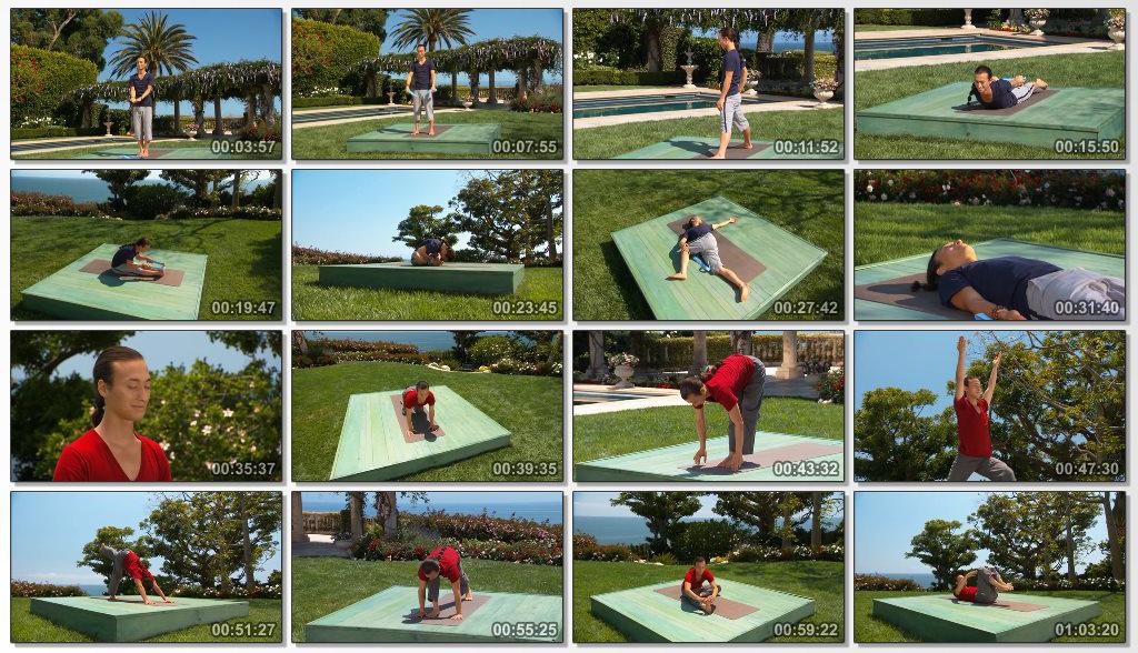 دانلود فیلم آموزشی Hatha And Flow Yoga For Beginners