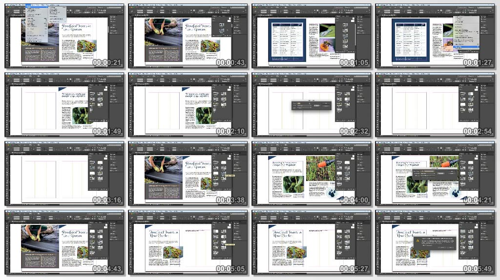 Lynda.InDesign.CC.2017.Essential.Training.www.Download.ir