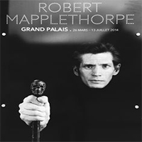 دانلود مستند Mapplethorpe Look At The Pictures 2016